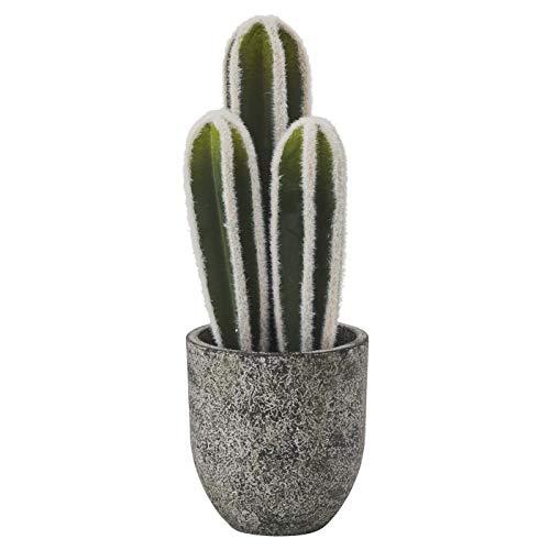 RoomClip商品情報 - ドウシシャ 人工観葉植物 グリーン 約35.0cm ロングサボテン HAC-044