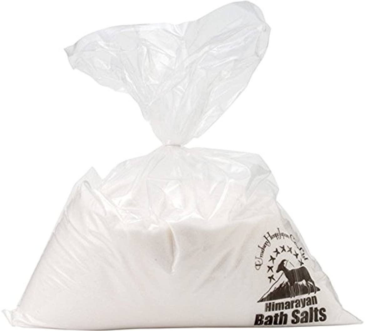 意識的髄豊富なヒマラヤ岩塩 バスソルト ホワイト あら塩 10kg