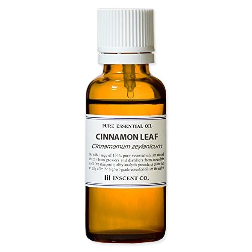 歯科医決定的インゲンシナモンリーフ 30ml インセント アロマオイル AEAJ 表示基準適合認定精油