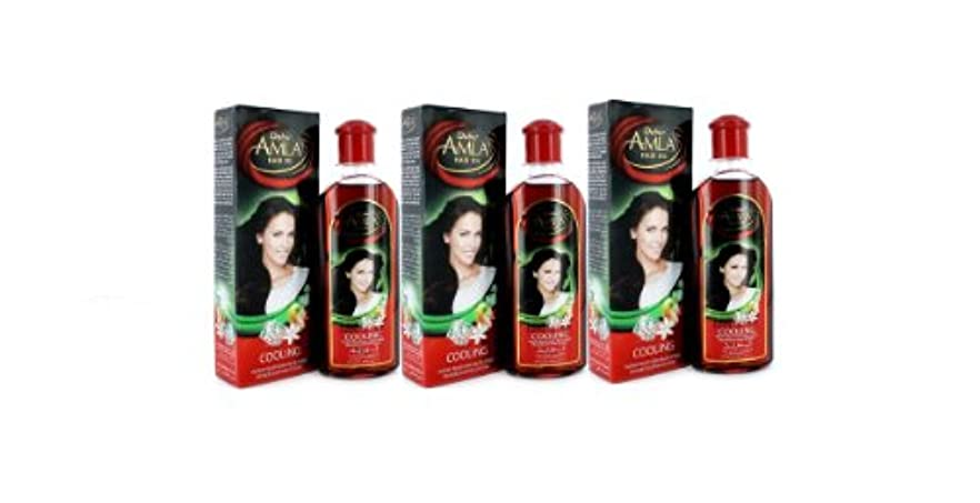 Dabur Amla Hair Oil 200 ml by Dabur [並行輸入品]
