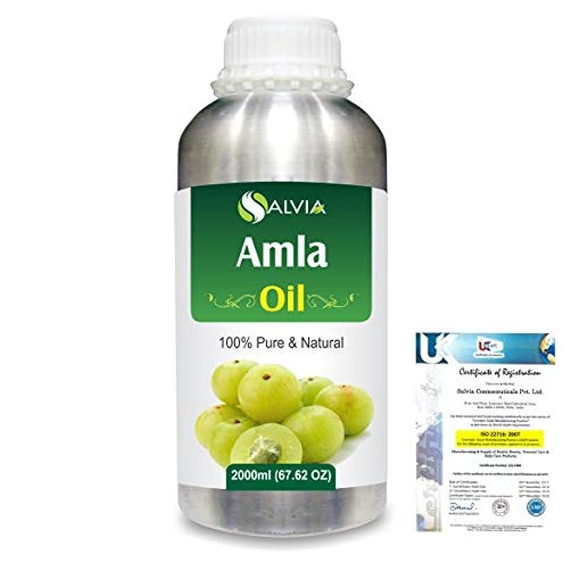 範囲遵守する発音するAmla Herbal (Phyllanthus emblica) 100% Natural Pure Oil 2000ml/67 fl.oz.