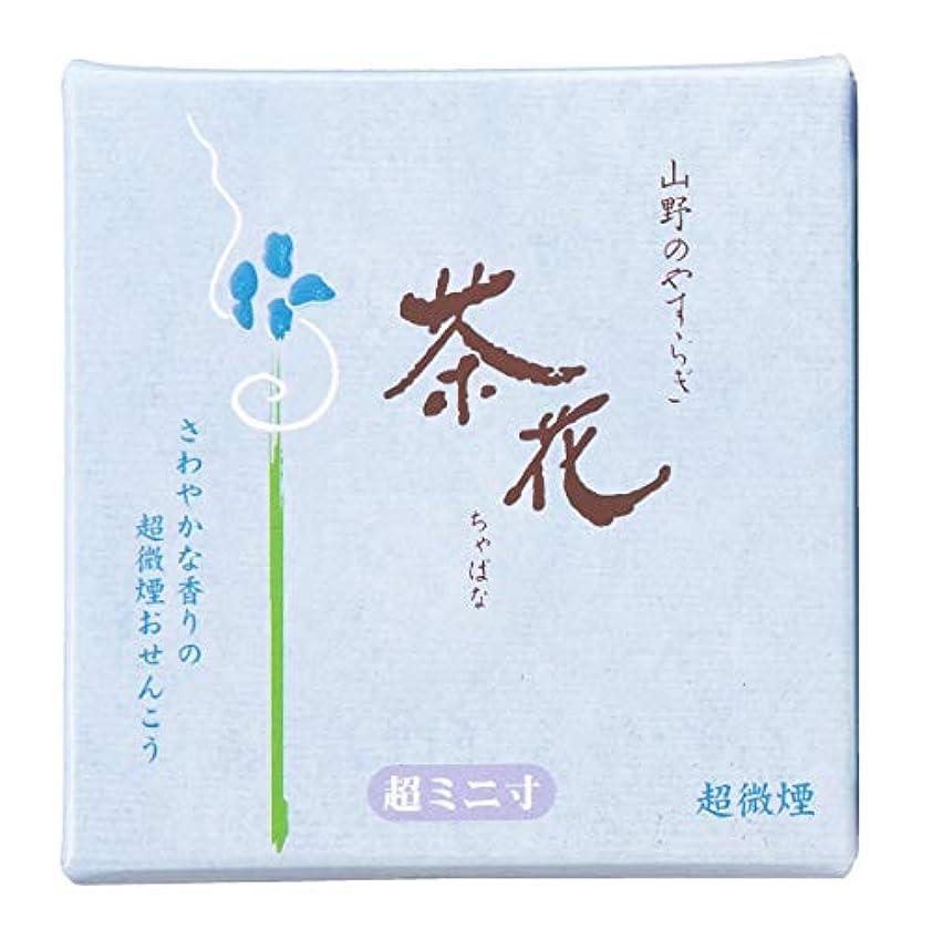 タクト有力者レジ尚林堂(Shorindo) 線香 青箱 6cm 茶花 超微煙 超ミニ寸 159120-1100