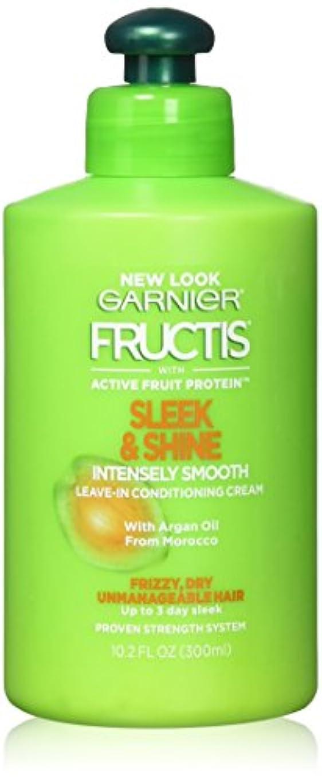 人生を作る滝故障中Garnier Fructisなめらか&強烈スムーズリーブインコンディショニングクリーム10.2オズ(2パック)をシャイン