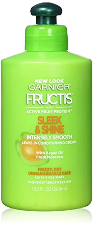 清めるジャンクション出撃者Garnier Fructisなめらか&強烈スムーズリーブインコンディショニングクリーム10.2オズ(2パック)をシャイン