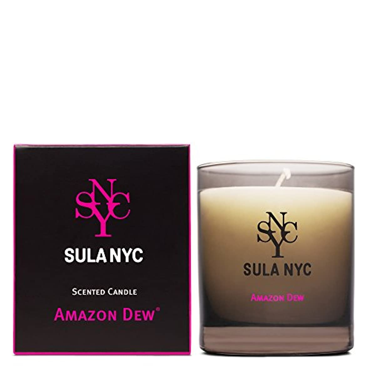 ふつう識別する反毒SULA NYC SCENTED CANDLE AMAZON DEW スーラNYCセンティッドキャンドル アマゾン?デュー