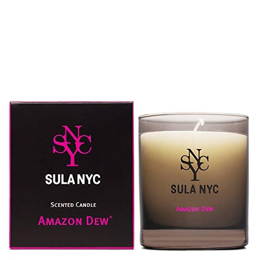 不良品サイバースペース虚栄心SULA NYC SCENTED CANDLE AMAZON DEW スーラNYCセンティッドキャンドル アマゾン?デュー