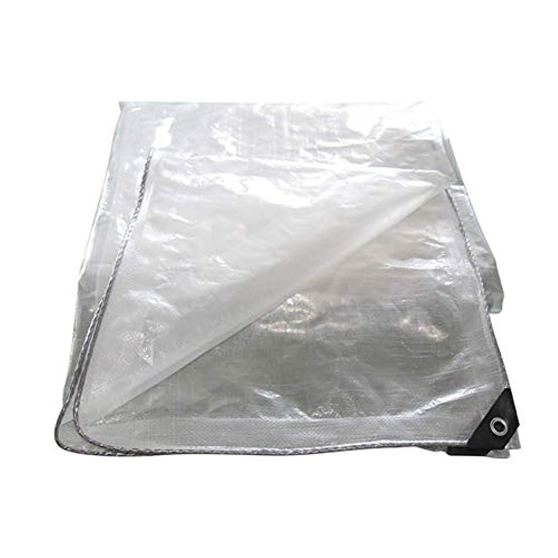 いらいらさせる麦芽味方ZEMIN オーニング サンシェードテン トタープ レインプルーフ 不凍液 厚くなった角度の縁取り アンチサン ボタンホール プラスチック PE、 18サイズ (Color : Clear, Size : 8x10m)