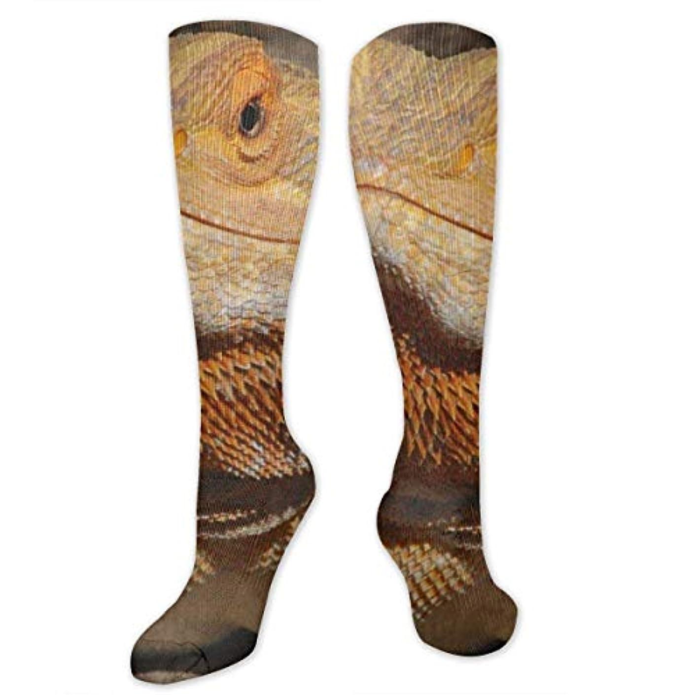 チャールズキージングチャーター最大限靴下,ストッキング,野生のジョーカー,実際,秋の本質,冬必須,サマーウェア&RBXAA Bearded Dragon Interest Socks Women's Winter Cotton Long Tube Socks...