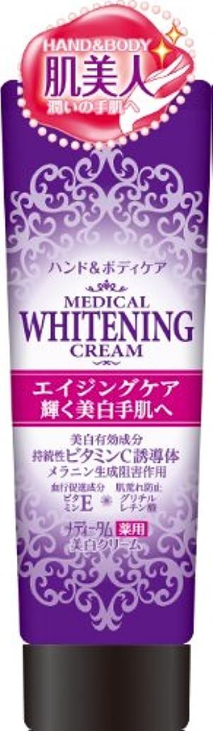 しわウォーターフロントひまわりラクール薬品販売 メディータム薬用美白クリーム 70g