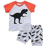 hfeweng 少年サマーショートTシャツ素敵な恐竜プリントカラーブロックパンツセット通気性少年コスチューム子供24ヶ月 - 7歳 ?色: 大小:24ヶ月