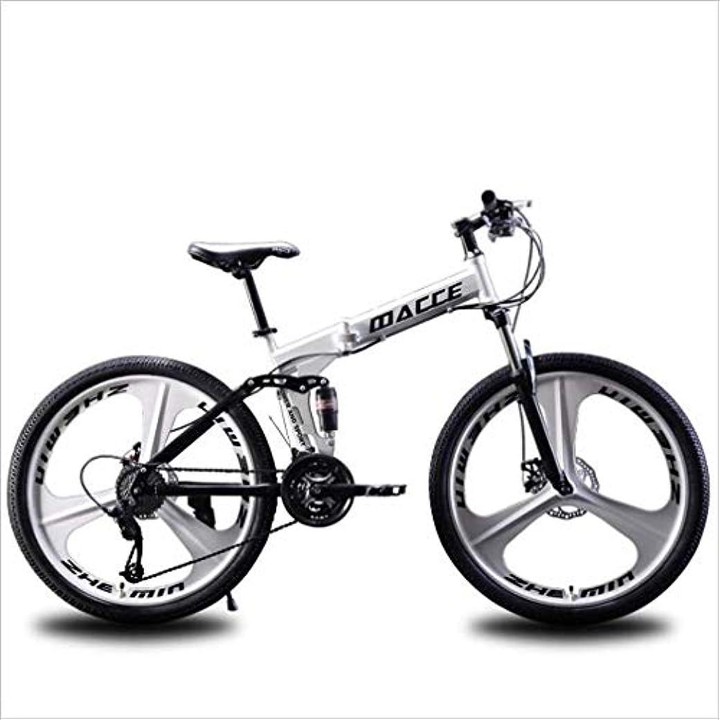 哲学的困惑加入折りたたみ式マウンテンバイク、ビーチスノーモービル自転車、ダブルディスクブレーキバイク、アルミ合金24インチホイール、男女兼用
