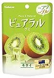 カバヤ食品 ピュアラルグミ キウイ 45g ×8袋