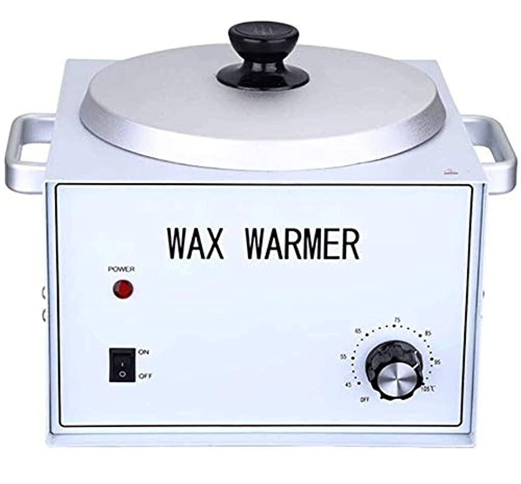 相手ダメージルーキーすべてのWAXS(ソフト、ハード、パラフィン)の高速メルトプロフェッショナルヒーター脱毛ワックスヒーター脱毛ヒーターワックスウォーマーシングルポット