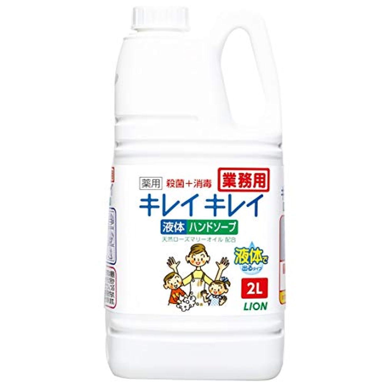 それ時増幅する【業務用 大容量】キレイキレイ 薬用 ハンドソープ 2L(医薬部外品)