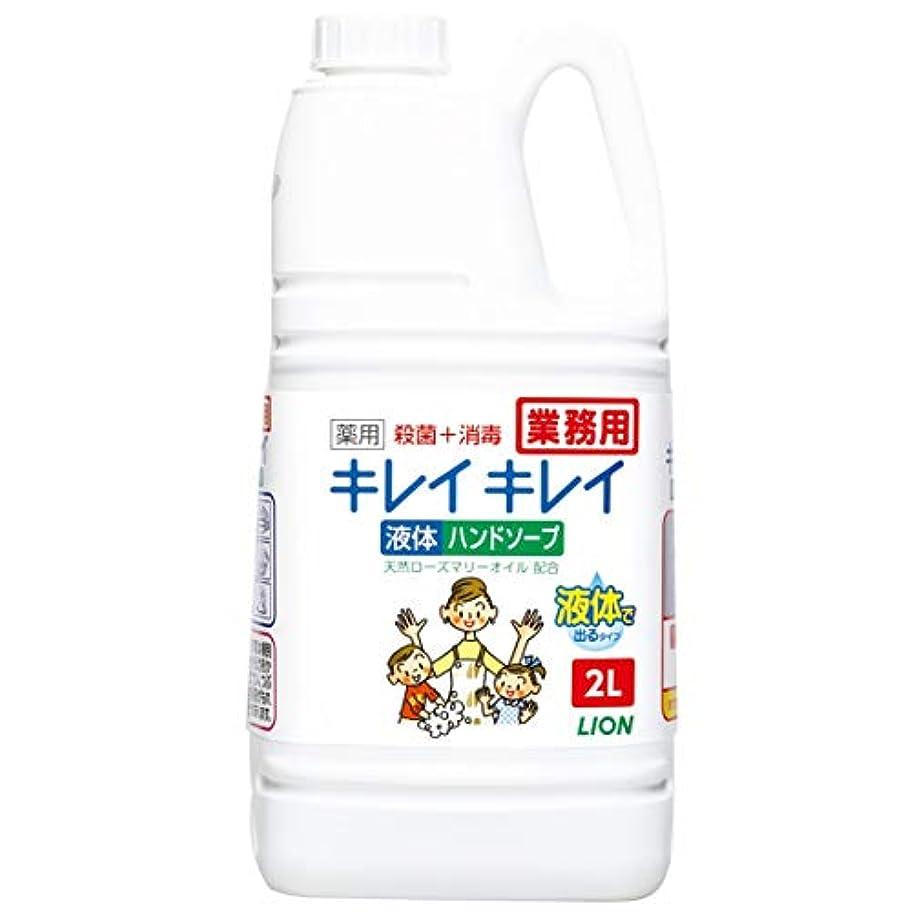 サラミ救援明らかにする【業務用 大容量】キレイキレイ 薬用 ハンドソープ 2L(医薬部外品)