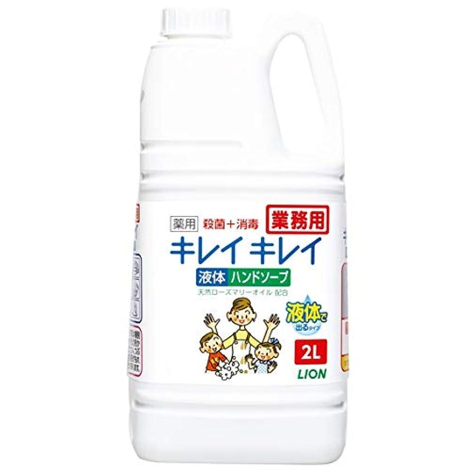ラインつかいますパッド【業務用 大容量】キレイキレイ 薬用 ハンドソープ 2L(医薬部外品)