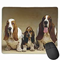 Cheng xiao Mouse Pad Basset Hound Three Dogs Rectangle Rubber Mousepad Non-toxic Print Gaming Mouse Pad with Black Lock Edge,9.8 * 11.8 in,ベーシック マウスパッド ゲーム用 標準サイズ