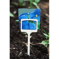 large Garden Stake Tags/Plastic Plant T-type/Plant tags 10Pcs [並行輸入品]