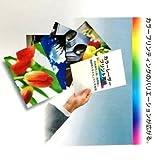 PaperandGoods マルチペーパー B4 Y目 (364mmX257mm) 157g/_ 180μ厚 800枚入(003-2908) COC157B4Y B4 Y目