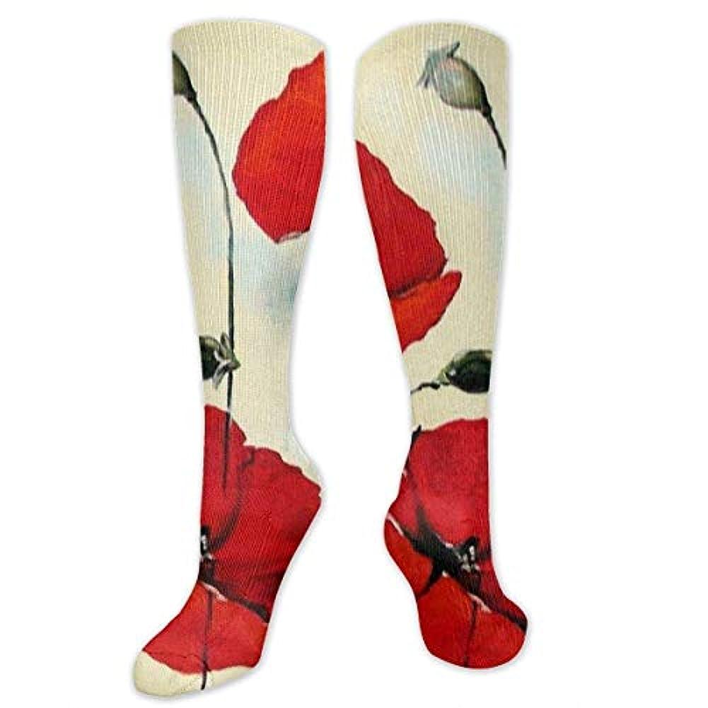 発動機北東作詞家靴下,ストッキング,野生のジョーカー,実際,秋の本質,冬必須,サマーウェア&RBXAA Red Poppies Flower Oil Painting Socks Women's Winter Cotton Long Tube...