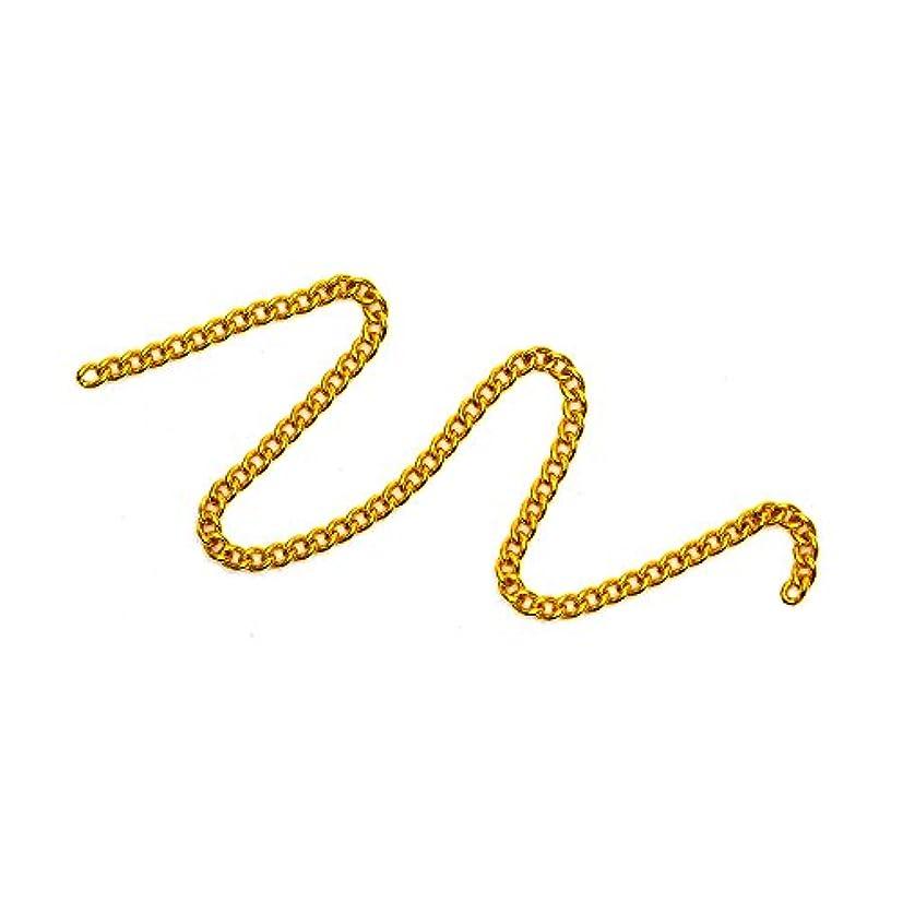 シェア巨大な義務的irogel イロジェル ネイルパーツ プレーンチェーン【ゴールド 1mm】【約10cm】
