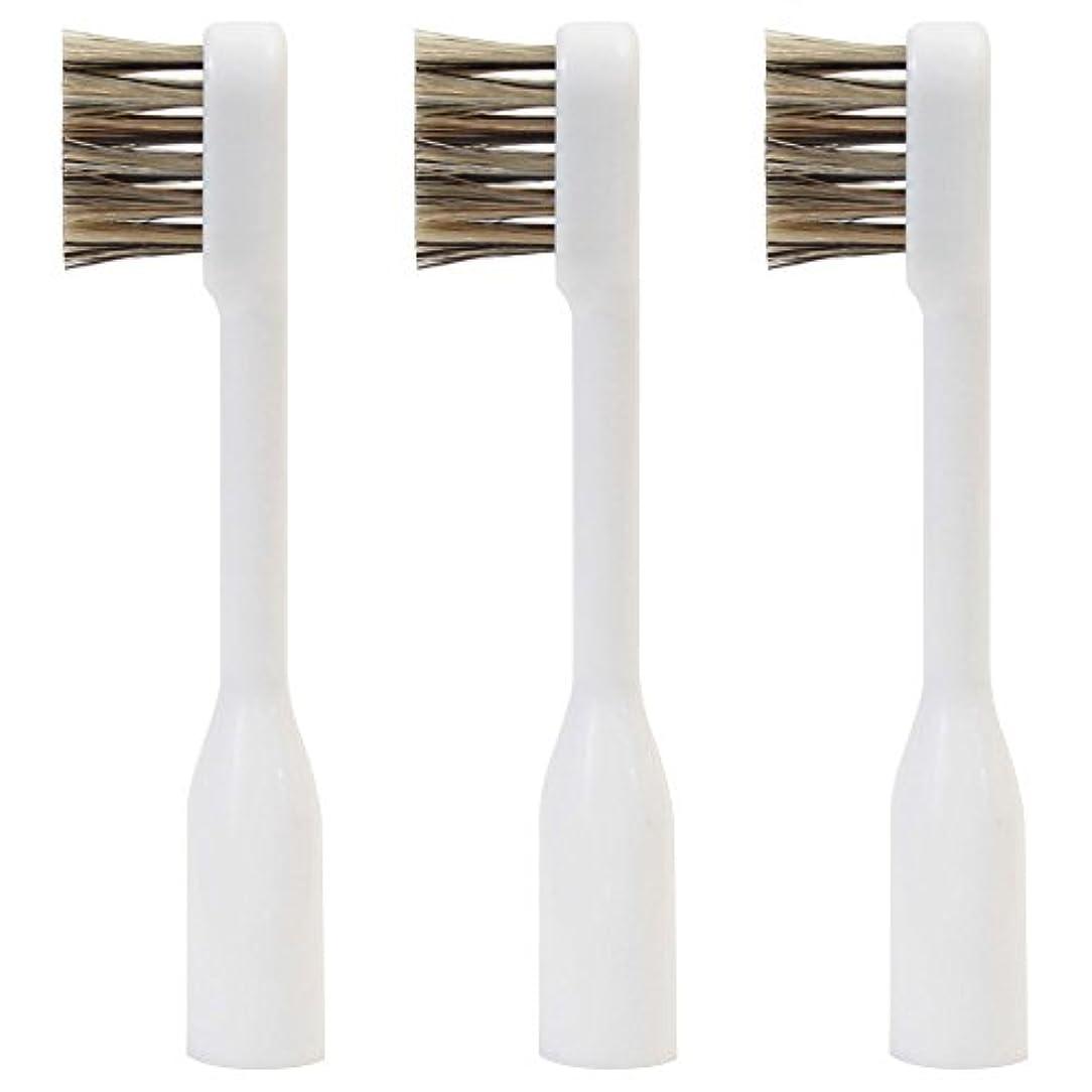 木製多年生ひどくラテール 交換用スペアブラシ 天然毛 スモールヘッド