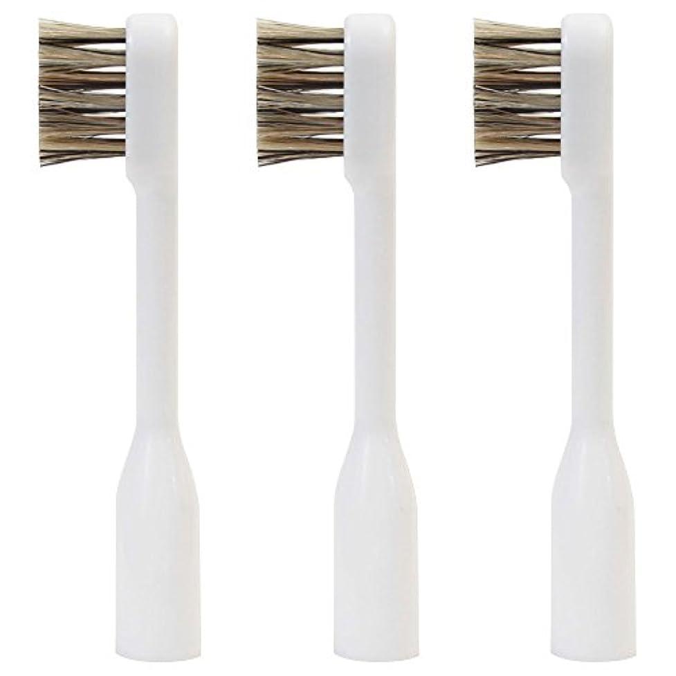 お風呂を持っている曲がった一貫性のないラテール 交換用スペアブラシ 天然毛 スモールヘッド