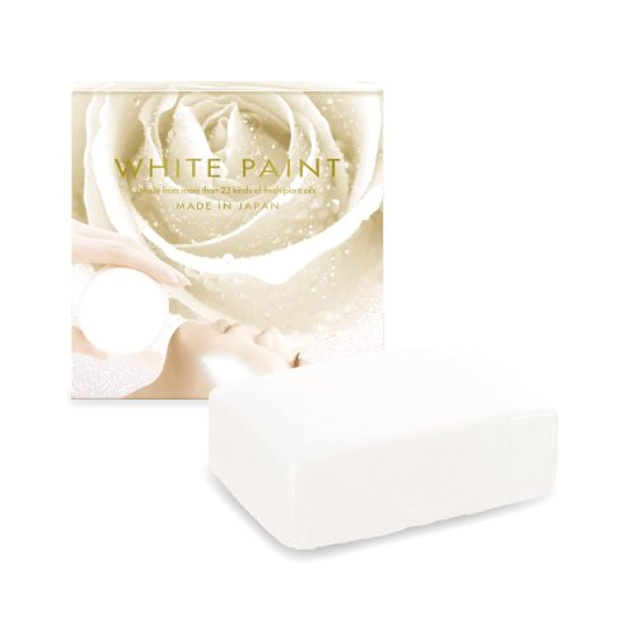 認知伝導率腫瘍ホワイトペイント 60g ハーフサイズ 塗る洗顔 石鹸 無添加 国産