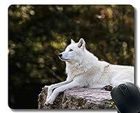 賭博のマウスパッドの習慣、コンピュータの滑り止めのゴム製マウスパッドのための野生生物の捕食者のオオカミ