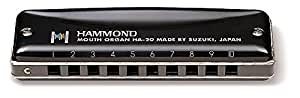 HAMMOND ハモンド 10穴ハーモニカ HAMMOND HA-20 F調