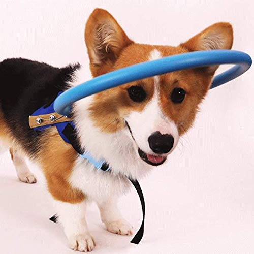 nikka(日華)盲目リング アイ フェイスガード 盲犬杖 XSサイズ