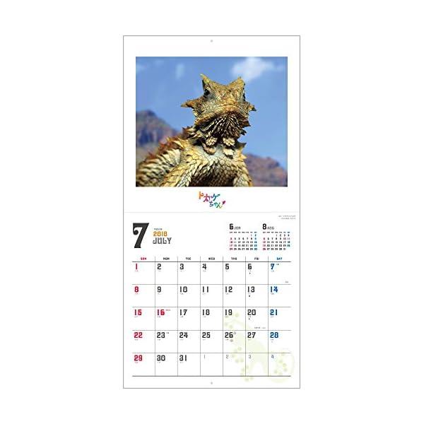 トカゲちゃん 2018年 カレンダー 壁掛け...の紹介画像10