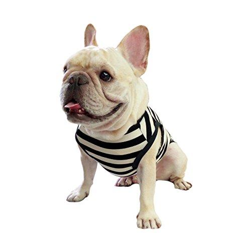 Frenchie(フレンチ―) フレンチブルドッグウェア パグ 犬服 ボーダー ブラッグ ホワイト 黒白 Tシャツ