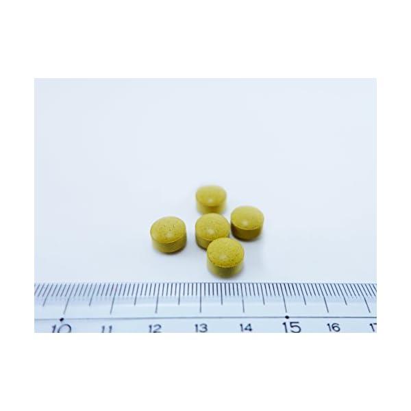 【第2類医薬品】ナイシトールZ 420錠の紹介画像5