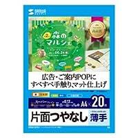 10個セットサンワサプライ インクジェット用スーパーファイン用紙A4サイズ20枚入り JP-EM5NA4X10 サンワサプライ