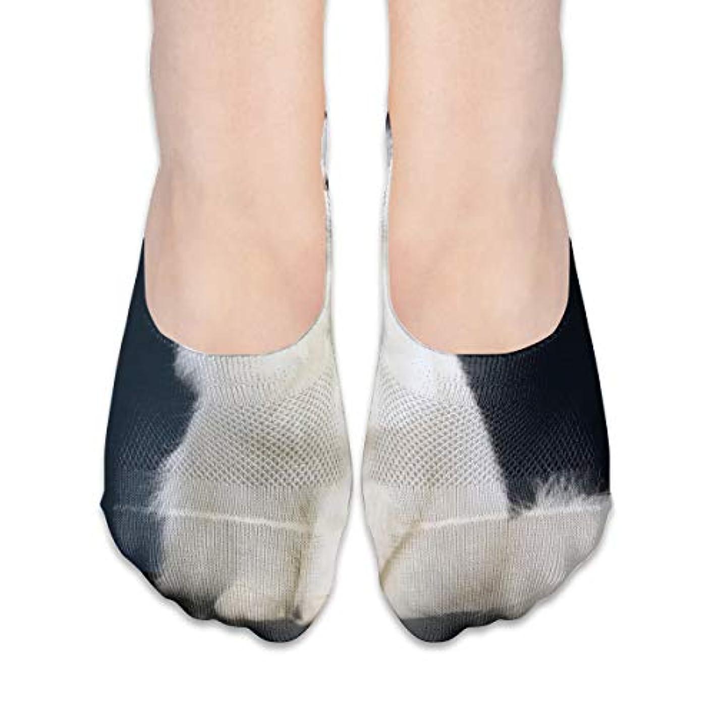 妖精ギャングクリック女性のかわいい白猫ローカットコットンボート隠し目に見えない靴下