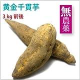 さつまいも 黄金千貫いも 3kg 鹿児島県産無農薬栽培