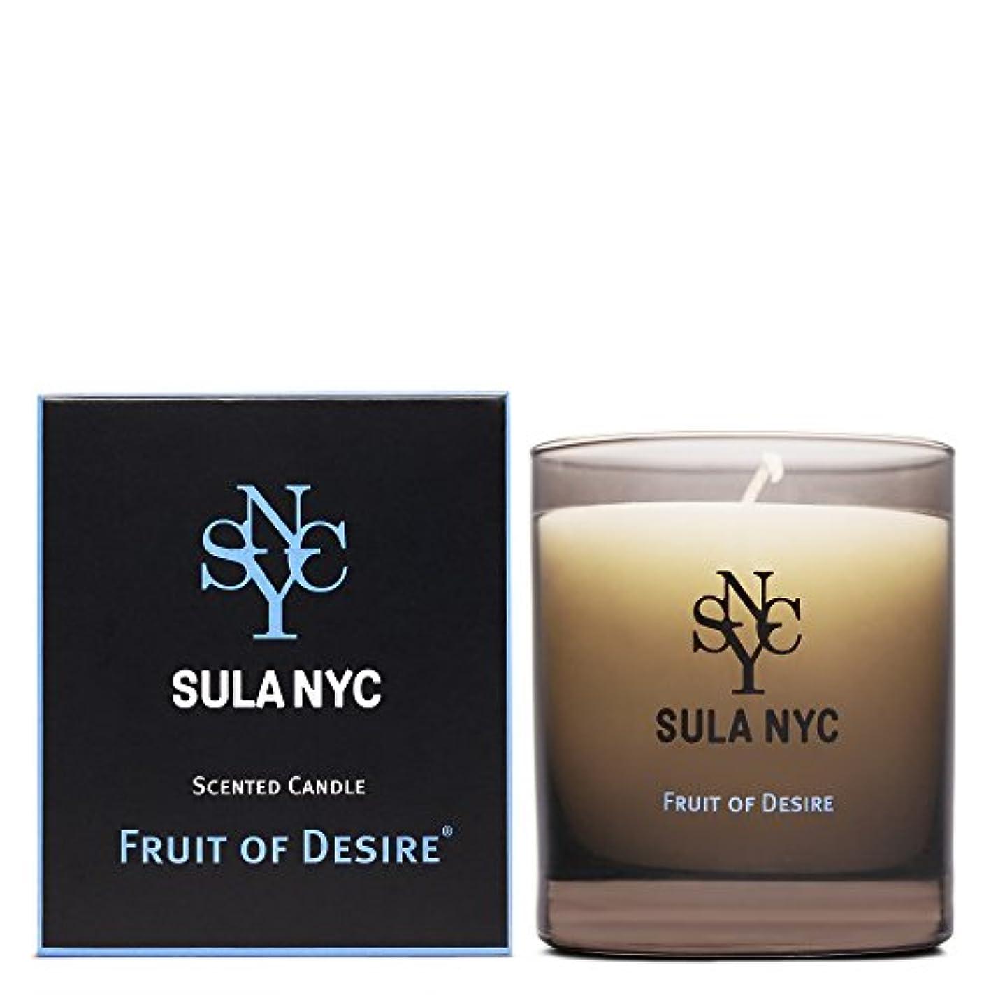 教養がある五十壮大なSULA NYC SCENTED CANDLE FRIT OF DESIRE スーラNYC センティッドキャンドル フルーツ?オブ?ディザイアー
