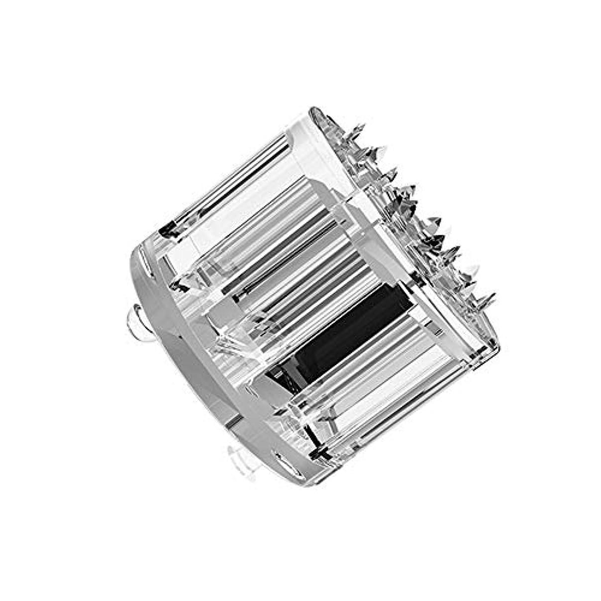 ミルク演劇ありがたいMTS Home Care Micro pin-10ea (ticktok用) ティク ホームケア マイクロピン 化粧品の浸透 コラーゲン 肌の弾力 アップ マイクロピン 毛穴や小じわ 角質ケア
