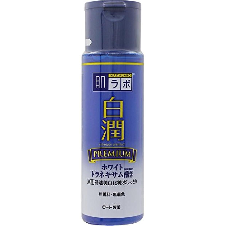 泥程度ヶ月目肌ラボ 白潤プレミアム 薬用浸透美白化粧水しっとり 170mL (医薬部外品)