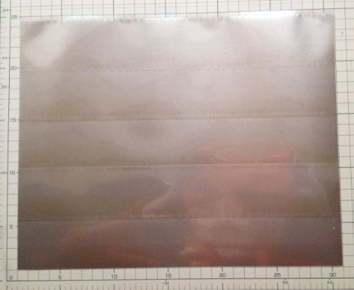 モットーインゲン軸磁場吸収シート :サイズ:30cm x 23.5cm エコロガ製ALL-IN-ONE 電磁波エプロン用MS5000M 胸用シールドシート