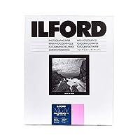イルフォード1771219フォト用紙17.8 x 24 cm 100枚