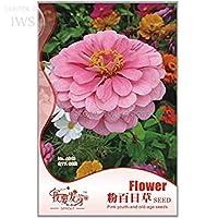 2018 ピンク美しいジニア種子、オリジナルパック、60種子、蝶を引き付ける庭を照らすIWSA048