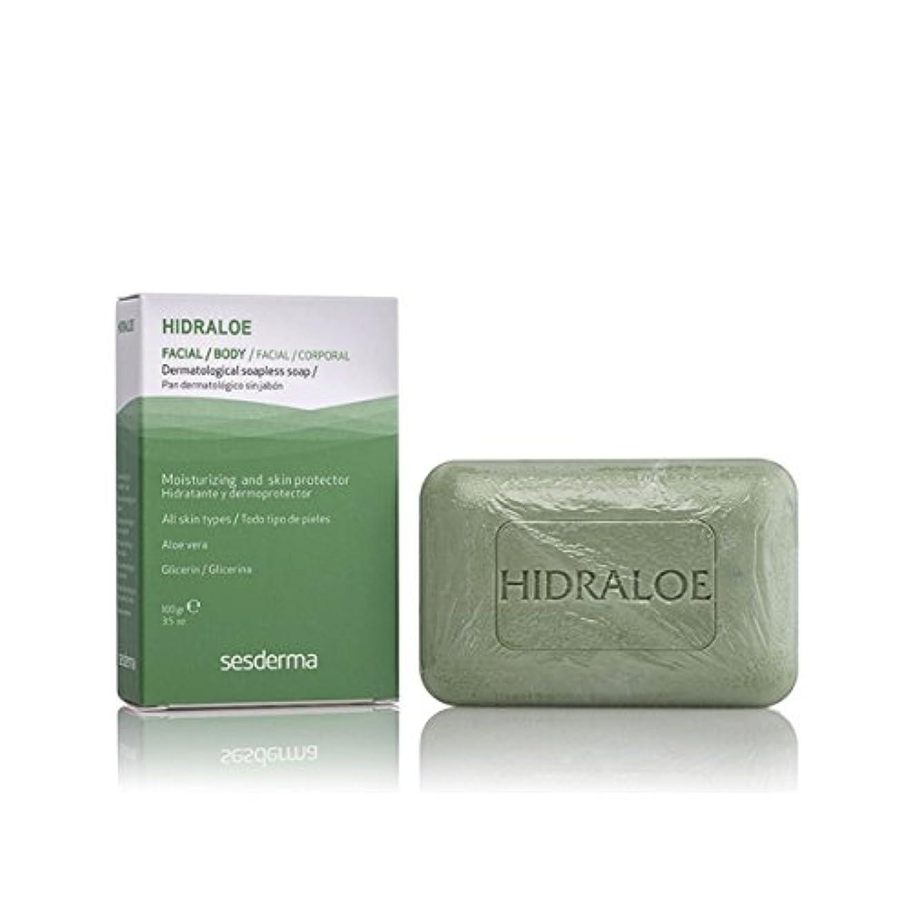 混乱受取人森林Sesderma Hidraloe Dermatological Soapless Soap 100gr [並行輸入品]