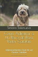 Cómo Adiestrar a Un Perro de Raza Pastor Catalán: Adiestramiento Fácil de un Pastor Catalán