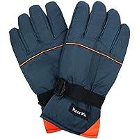 スキーグローブ メンズ スキー 手袋 大人用 スノーグローブ W2510-14