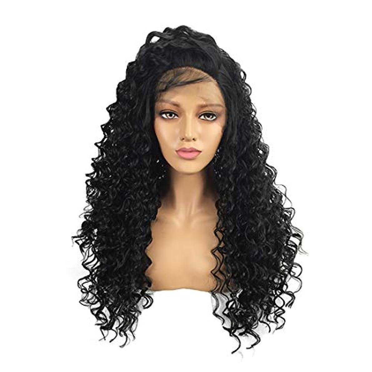 プレートオーナー代わってKoloeplf 黒人女性用レースフロントウィッグカーリーブラックフルウィッグ女性用ナチュラル耐熱性 (Size : 24 inch)