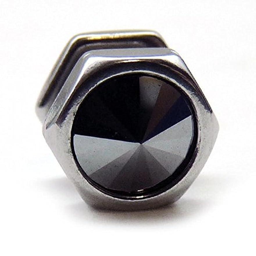 スライムまあ改修するスワンユニオン swanunion 六角形 片耳 磁石 マグピ ステンレス製フェイクピアス fp29