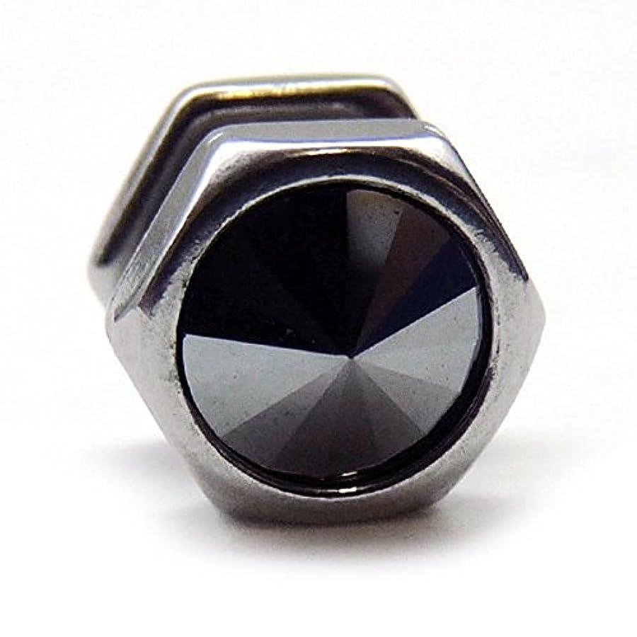 必要条件多様体ハーネススワンユニオン swanunion 六角形 片耳 磁石 マグピ ステンレス製フェイクピアス fp29