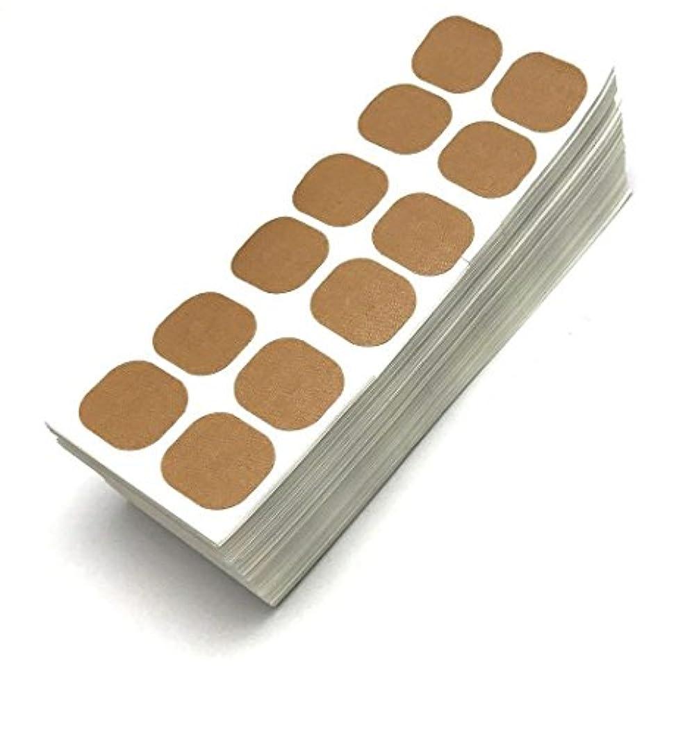 候補者くつろぐゴミ箱お徳用 貼り替え用シール 12枚付 100シート入 磁気治療器用 (ケースなし) (粒径8mm用)